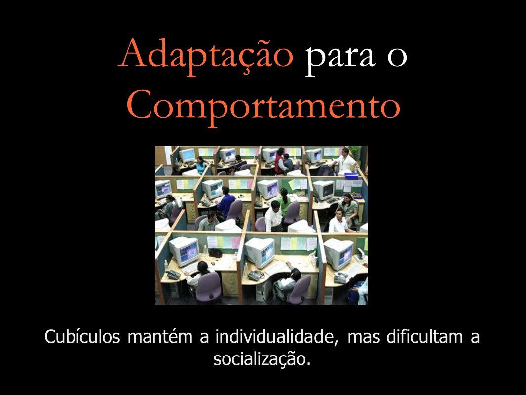 Adaptação para o Comportamento Cubículos mantém a individualidade, mas dificultam a socialização.