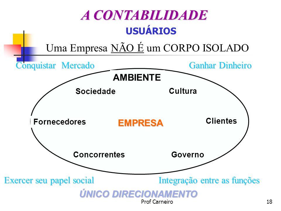 Prof Carneiro18 Uma Empresa NÃO É um CORPO ISOLADO Conquistar Mercado Integração entre as funções Exercer seu papel social Ganhar Dinheiro ÚNICO DIREC