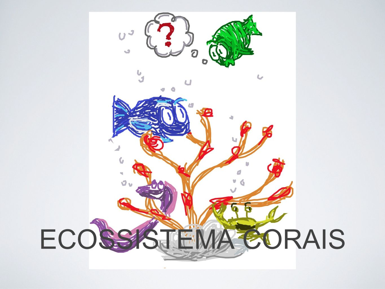 ECOSSISTEMA CORAIS