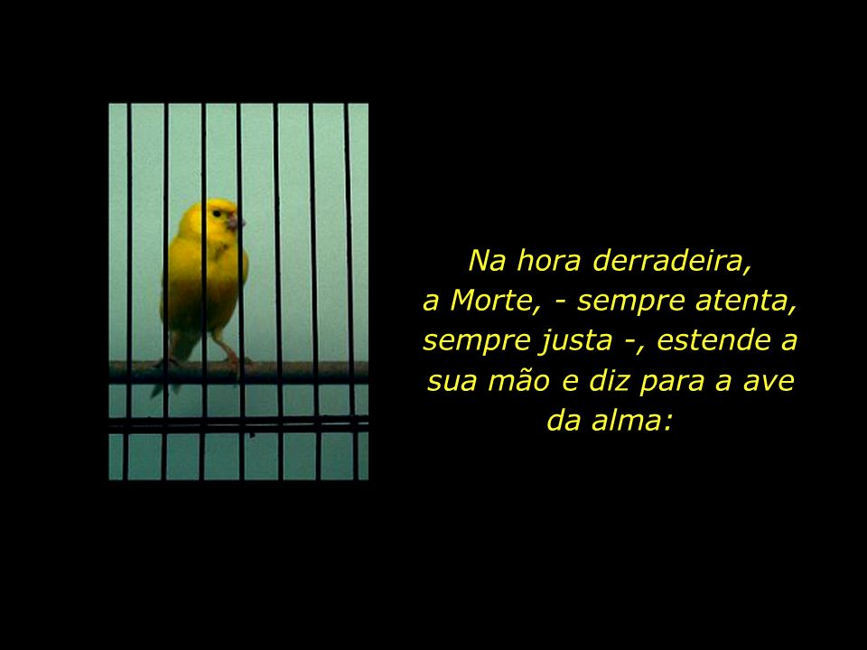 O corpo físico se assemelha a uma gaiola, e a alma, a uma ave que nela habita.