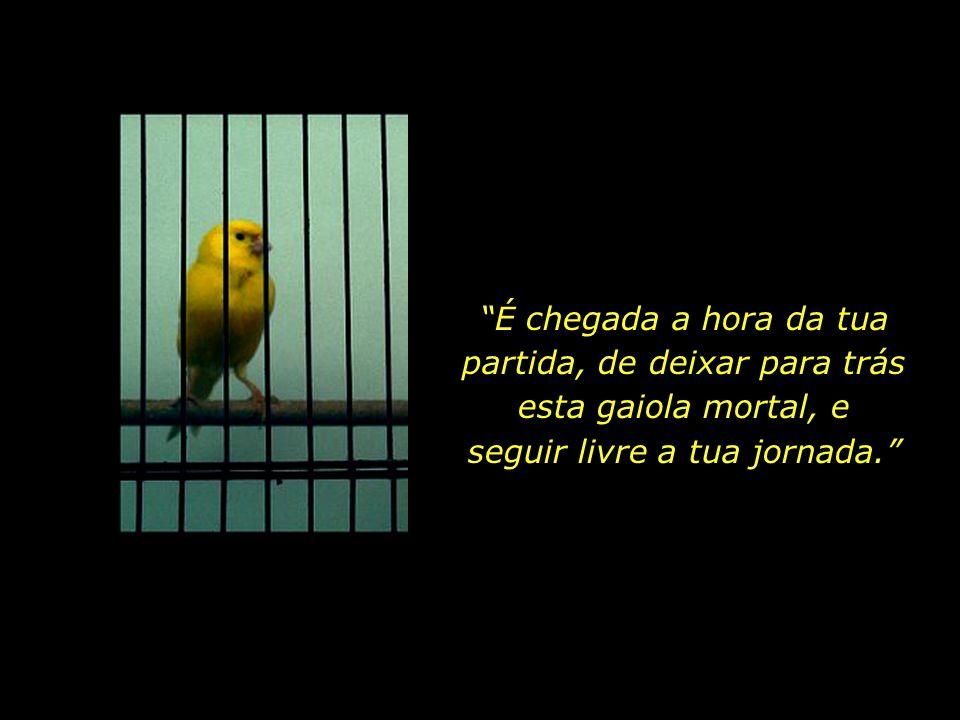 Na hora derradeira, a Morte, - sempre atenta, sempre justa -, estende a sua mão e diz para a ave da alma: