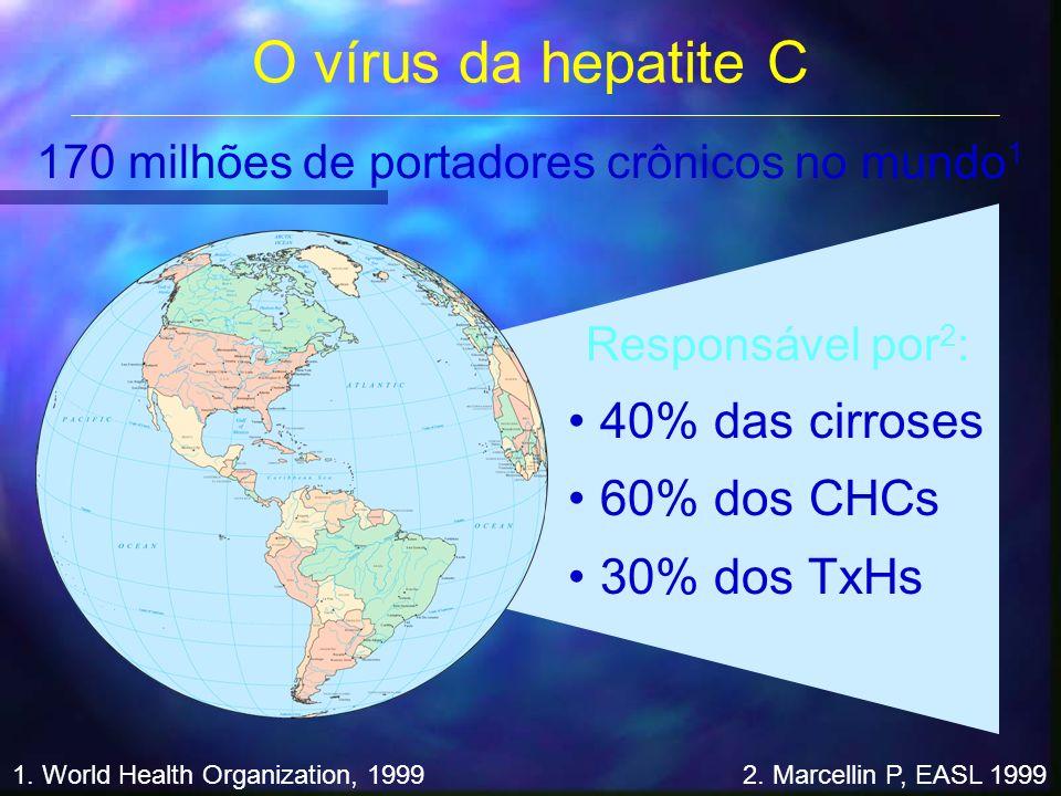 O vírus da hepatite C Responsável por 2 : 40% das cirroses 60% dos CHCs 30% dos TxHs 1. World Health Organization, 19992. Marcellin P, EASL 1999 170 m