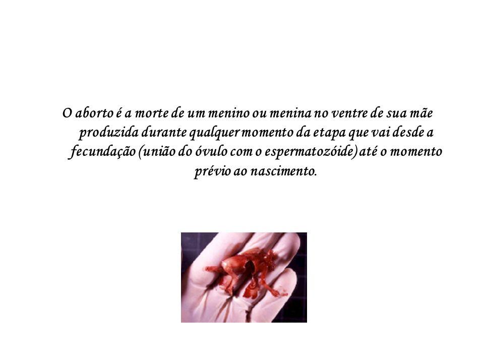 O aborto é a morte de um menino ou menina no ventre de sua mãe produzida durante qualquer momento da etapa que vai desde a fecundação (união do óvulo