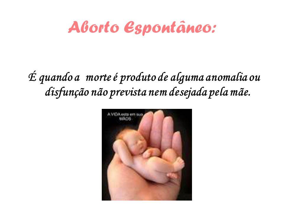 Aborto Espontâneo: É quando a morte é produto de alguma anomalia ou disfunção não prevista nem desejada pela mãe.