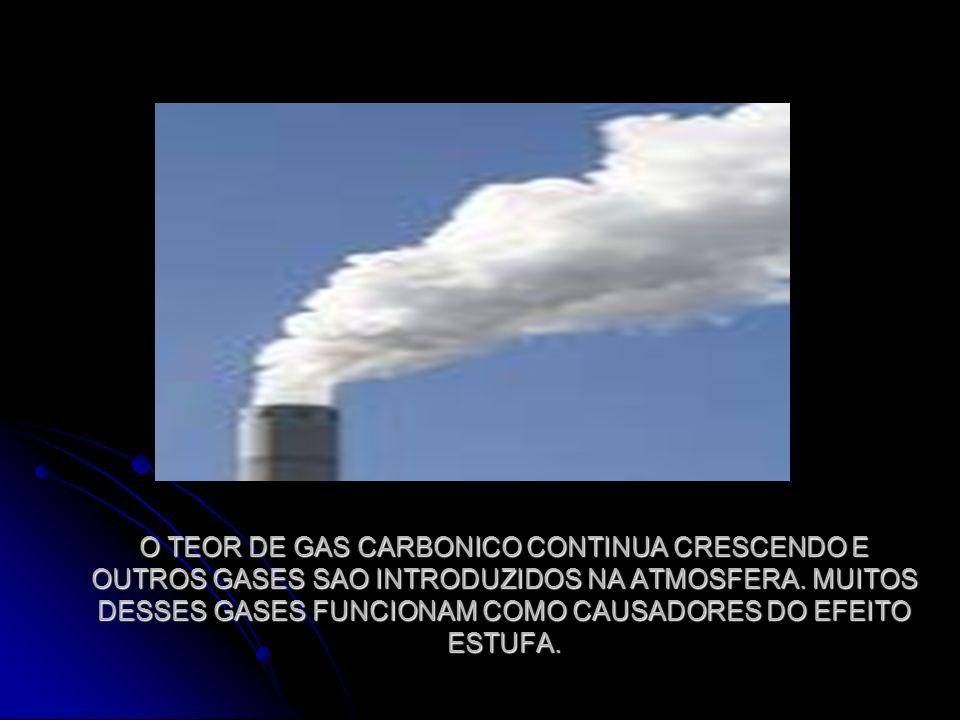 O TEOR DE GAS CARBONICO CONTINUA CRESCENDO E OUTROS GASES SAO INTRODUZIDOS NA ATMOSFERA. MUITOS DESSES GASES FUNCIONAM COMO CAUSADORES DO EFEITO ESTUF
