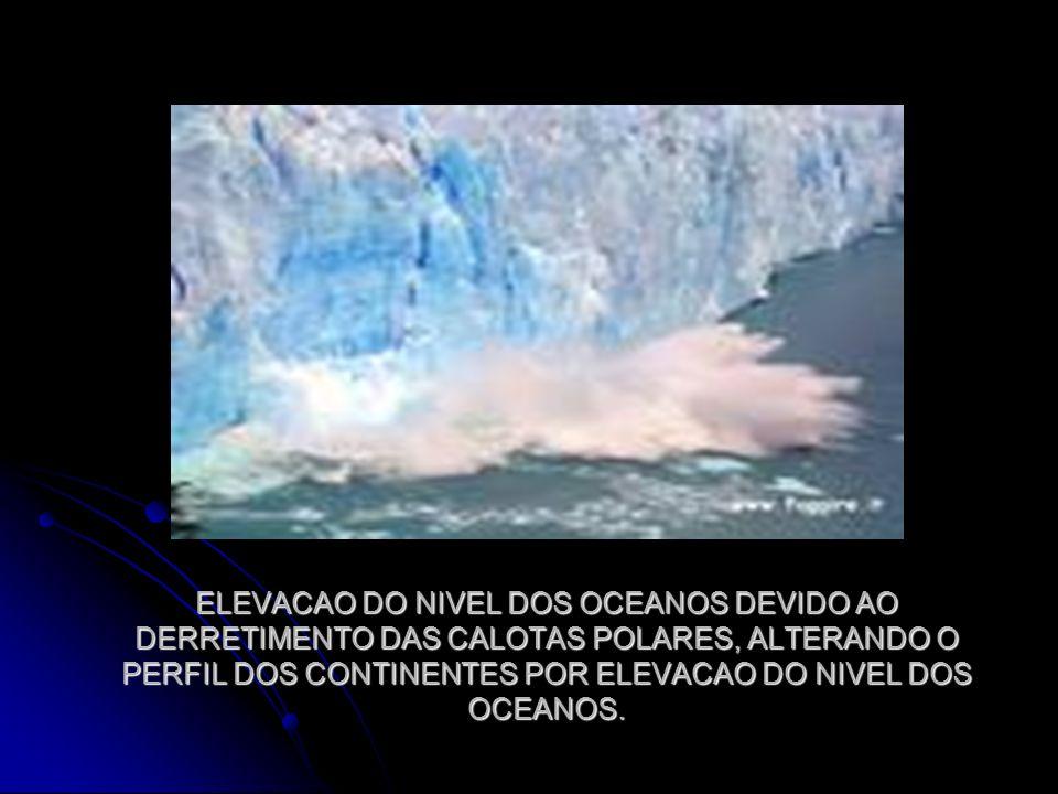ELEVACAO DO NIVEL DOS OCEANOS DEVIDO AO DERRETIMENTO DAS CALOTAS POLARES, ALTERANDO O PERFIL DOS CONTINENTES POR ELEVACAO DO NIVEL DOS OCEANOS.