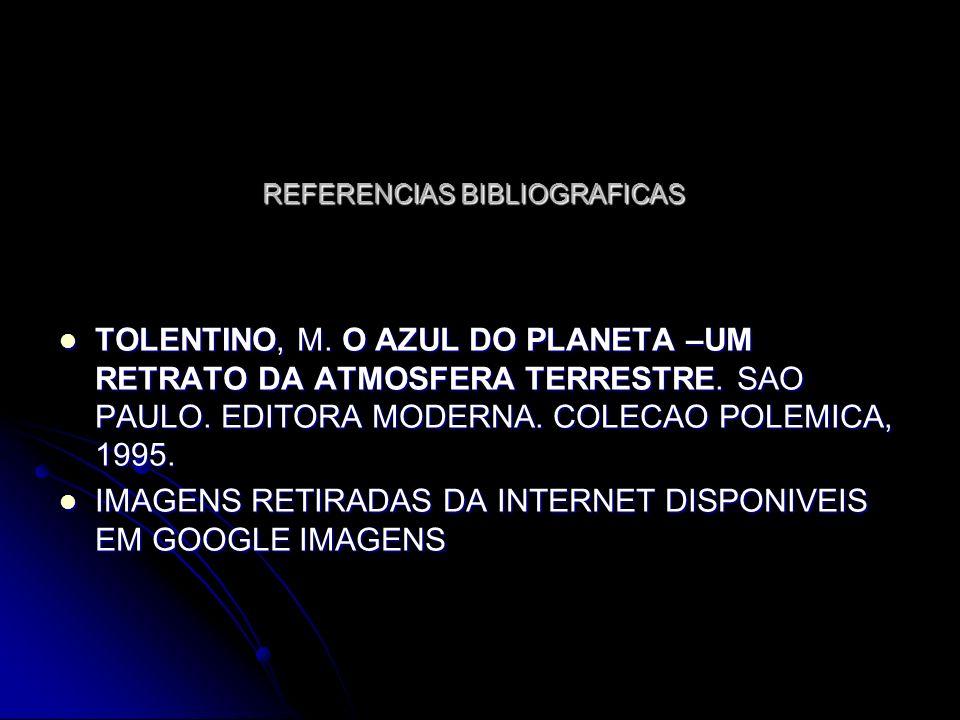 REFERENCIAS BIBLIOGRAFICAS TOLENTINO, M. O AZUL DO PLANETA –UM RETRATO DA ATMOSFERA TERRESTRE. SAO PAULO. EDITORA MODERNA. COLECAO POLEMICA, 1995. TOL