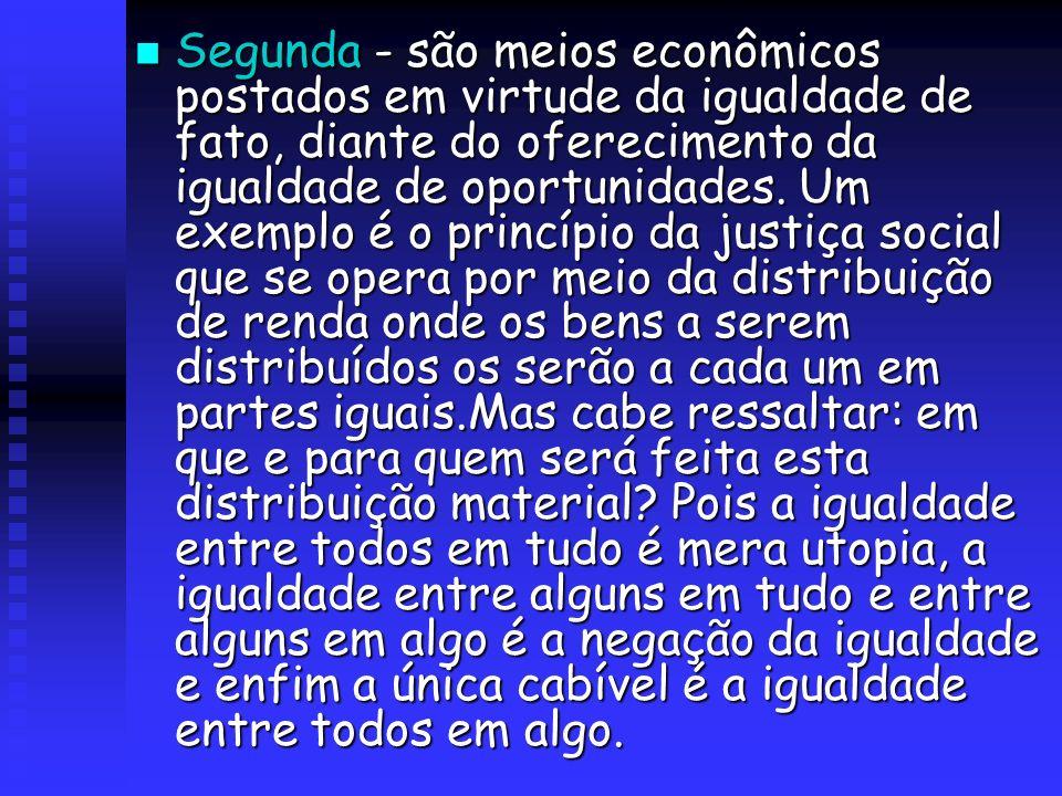 Segunda - são meios econômicos postados em virtude da igualdade de fato, diante do oferecimento da igualdade de oportunidades. Um exemplo é o princípi