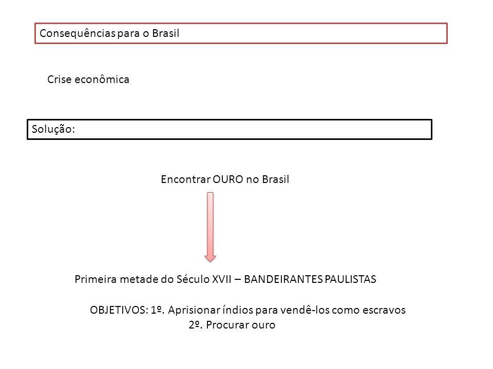 Consequências para o Brasil Crise econômica Solução: Encontrar OURO no Brasil Primeira metade do Século XVII – BANDEIRANTES PAULISTAS OBJETIVOS: 1º. A