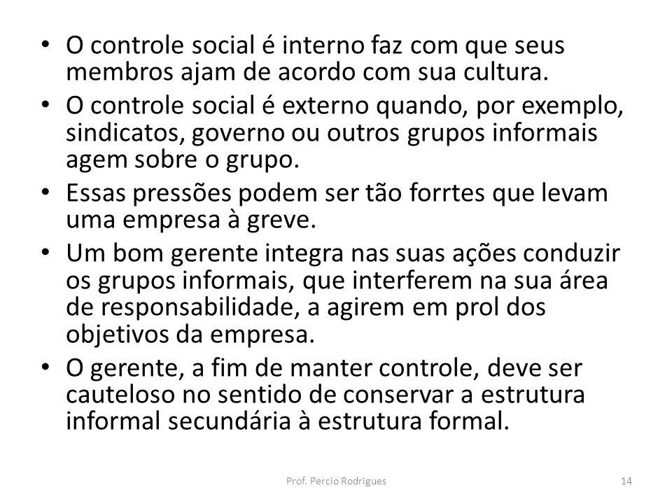 O controle social é interno faz com que seus membros ajam de acordo com sua cultura. O controle social é externo quando, por exemplo, sindicatos, gove
