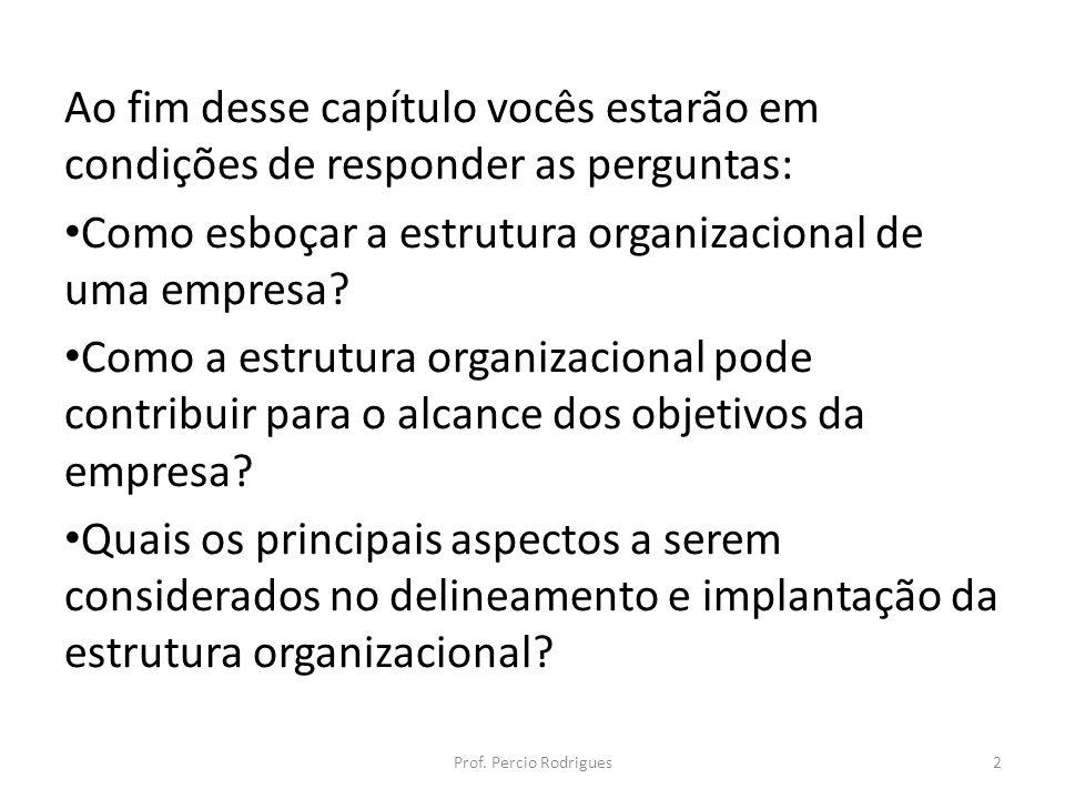 Ao fim desse capítulo vocês estarão em condições de responder as perguntas: Como esboçar a estrutura organizacional de uma empresa? Como a estrutura o