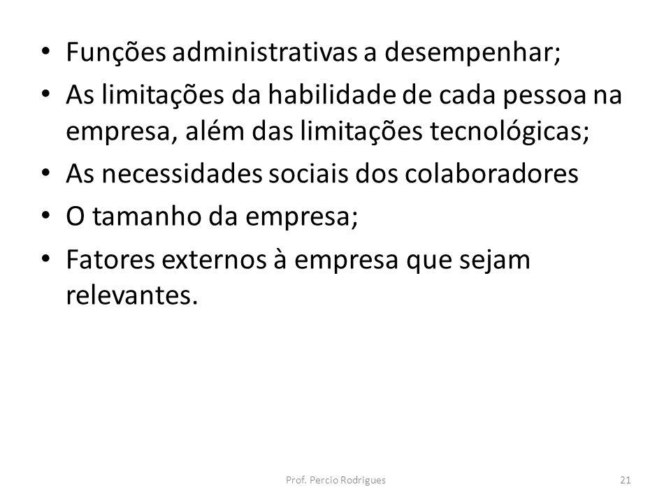 Funções administrativas a desempenhar; As limitações da habilidade de cada pessoa na empresa, além das limitações tecnológicas; As necessidades sociai