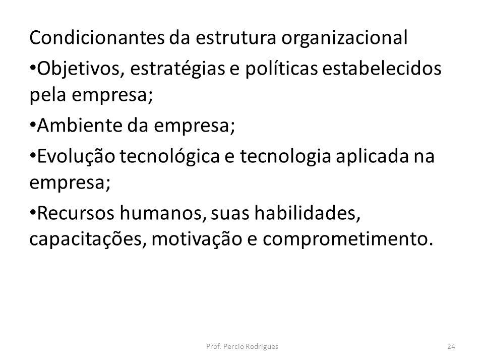 Condicionantes da estrutura organizacional Objetivos, estratégias e políticas estabelecidos pela empresa; Ambiente da empresa; Evolução tecnológica e