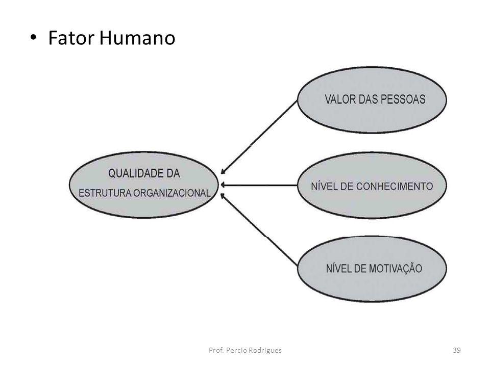 Fator Humano Prof. Percio Rodrigues39