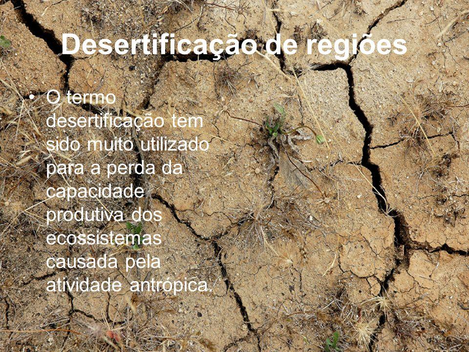 Desertificação de regiões O termo desertificação tem sido muito utilizado para a perda da capacidade produtiva dos ecossistemas causada pela atividade
