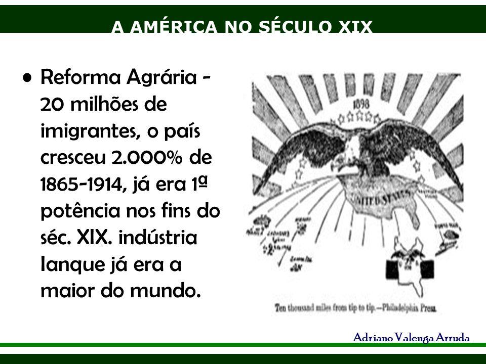 A AMÉRICA NO SÉCULO XIX Adriano Valenga Arruda Reforma Agrária - 20 milhões de imigrantes, o país cresceu 2.000% de 1865-1914, já era 1ª potência nos