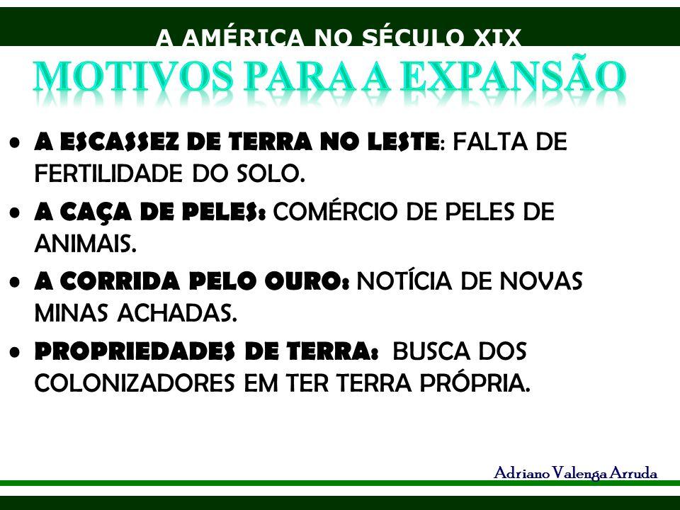 A AMÉRICA NO SÉCULO XIX Adriano Valenga Arruda A ESCASSEZ DE TERRA NO LESTE : FALTA DE FERTILIDADE DO SOLO. A CAÇA DE PELES: COMÉRCIO DE PELES DE ANIM