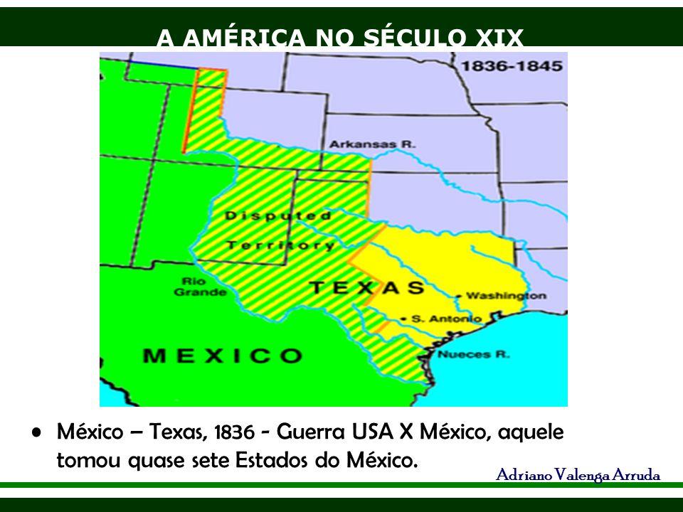 A AMÉRICA NO SÉCULO XIX Adriano Valenga Arruda Guerra de Secessão: 1861-65 -S x N, o sul, colônia de exploração pregava o livre cambismo, enquanto o Norte, industrializado pregava o protecionismo O Sul declarou-se independente.