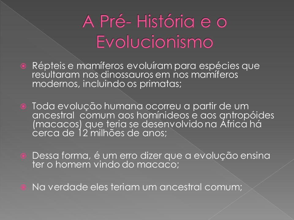 Répteis e mamíferos evoluíram para espécies que resultaram nos dinossauros em nos mamíferos modernos, incluindo os primatas; Toda evolução humana ocor