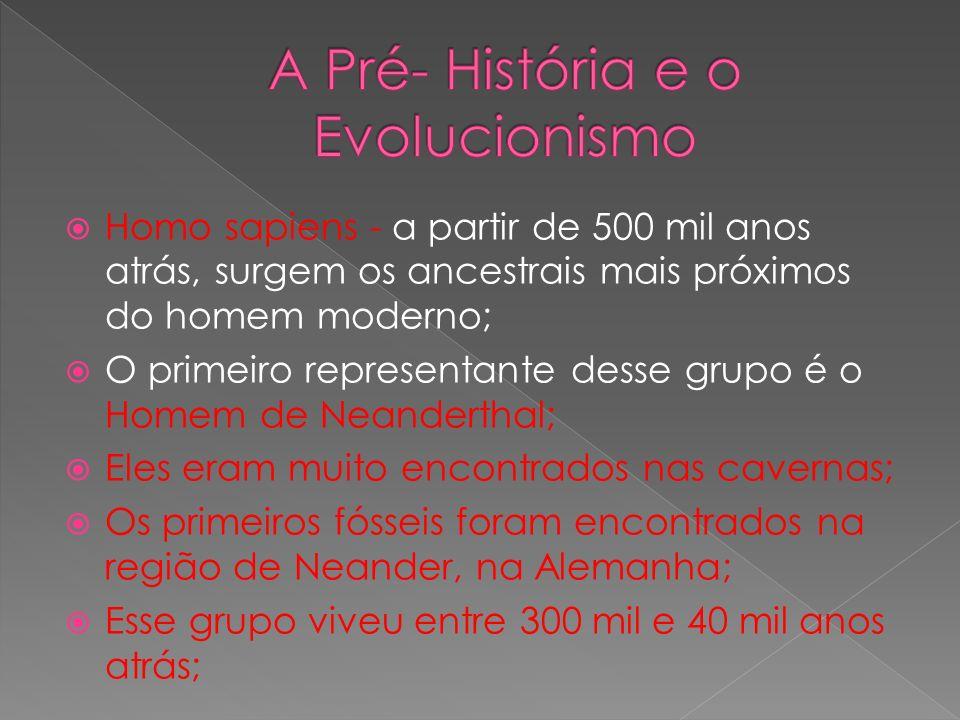 Homo sapiens - a partir de 500 mil anos atrás, surgem os ancestrais mais próximos do homem moderno; O primeiro representante desse grupo é o Homem de