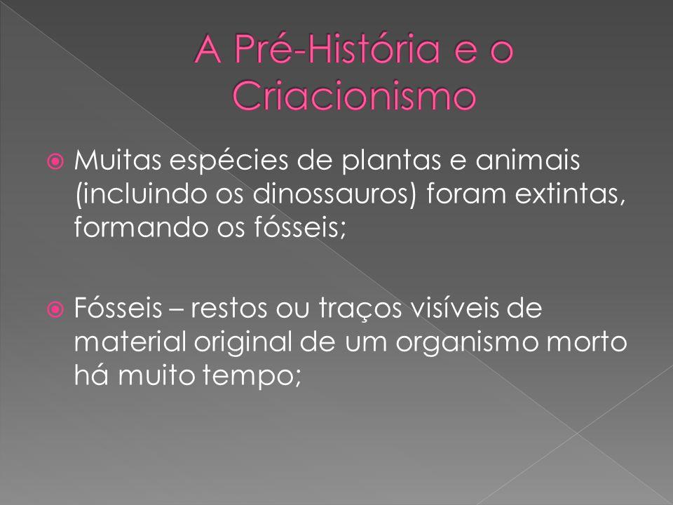 Muitas espécies de plantas e animais (incluindo os dinossauros) foram extintas, formando os fósseis; Fósseis – restos ou traços visíveis de material o
