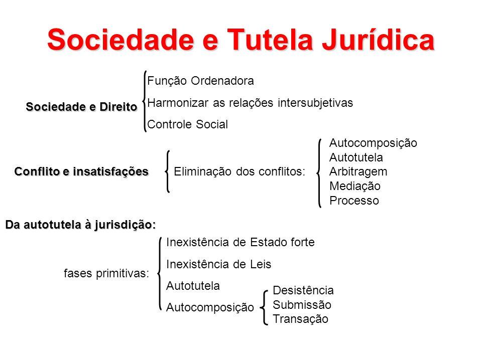 Sociedade e Tutela Jurídica Sociedade e Direito Função Ordenadora Harmonizar as relações intersubjetivas Controle Social Conflito e insatisfações Elim