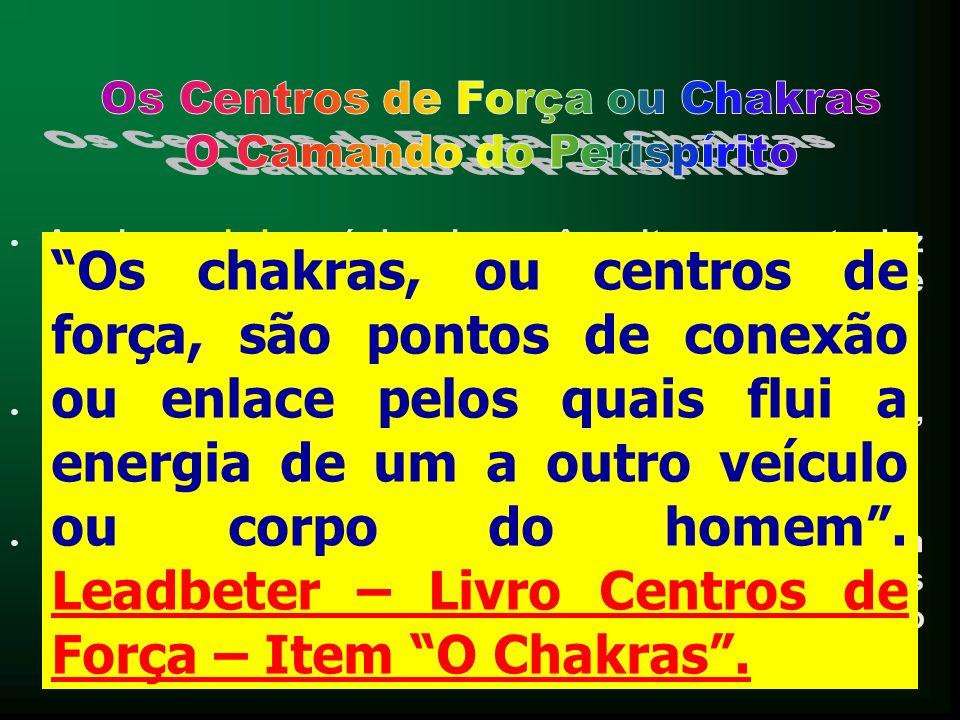 A palavra chakras é de origem sânscrita, e se traduz pelo termo roda. Também são chamados de Centros de Força, por André Luiz. Efetivamente, o formato