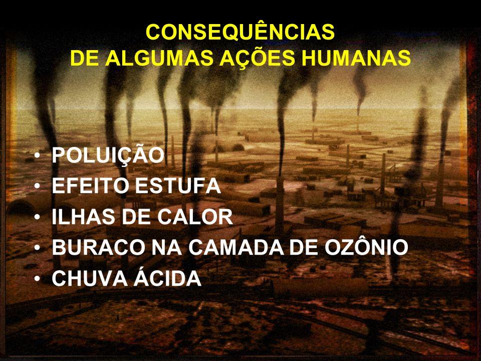 CONSEQUÊNCIAS DE ALGUMAS AÇÕES HUMANAS POLUIÇÃO EFEITO ESTUFA ILHAS DE CALOR BURACO NA CAMADA DE OZÔNIO CHUVA ÁCIDA