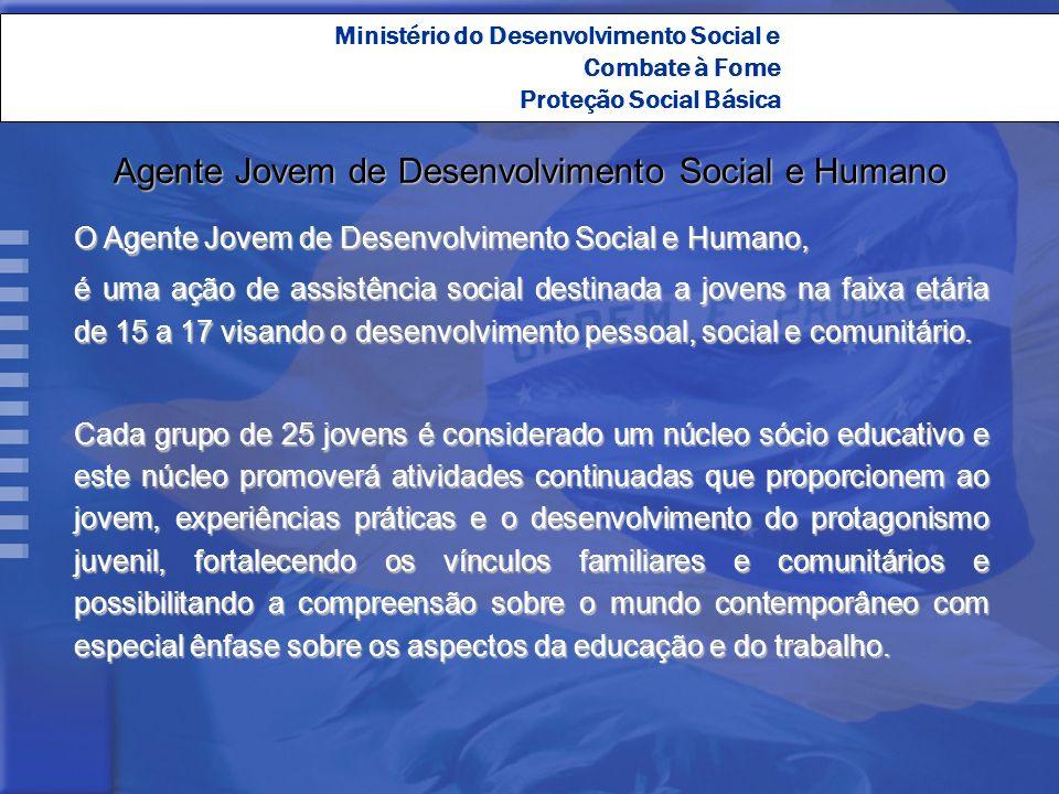 Ministério do Desenvolvimento Social e Combate à Fome Proteção Social Básica Agente Jovem de Desenvolvimento Social e Humano O Agente Jovem de Desenvo