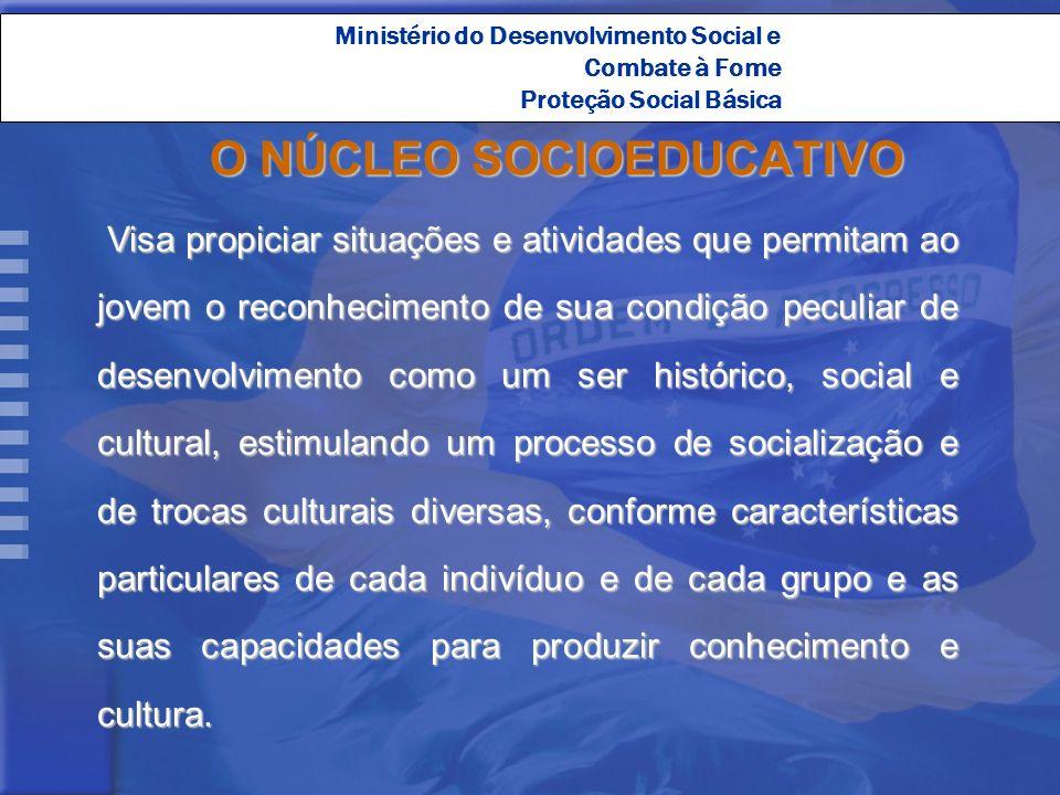 Ministério do Desenvolvimento Social e Combate à Fome Proteção Social Básica O NÚCLEO SOCIOEDUCATIVO Visa propiciar situações e atividades que permita