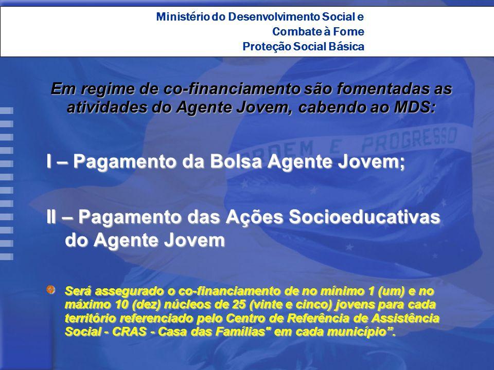 Ministério do Desenvolvimento Social e Combate à Fome Proteção Social Básica Em regime de co-financiamento são fomentadas as atividades do Agente Jove