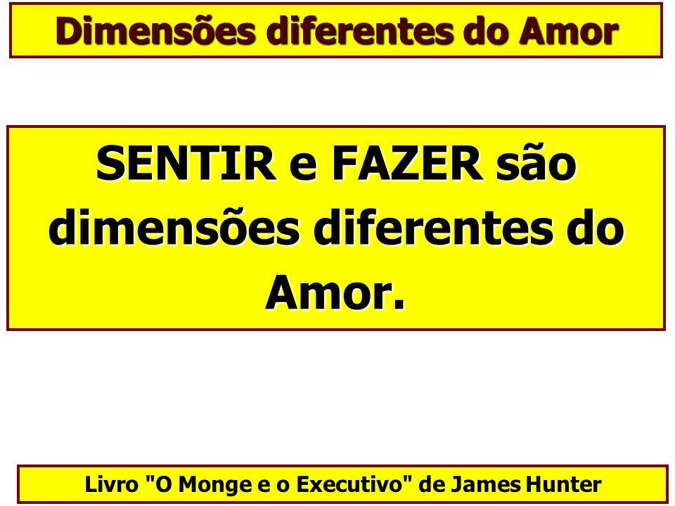 Dimensões diferentes do Amor SENTIR e FAZER são dimensões diferentes do Amor. Livro