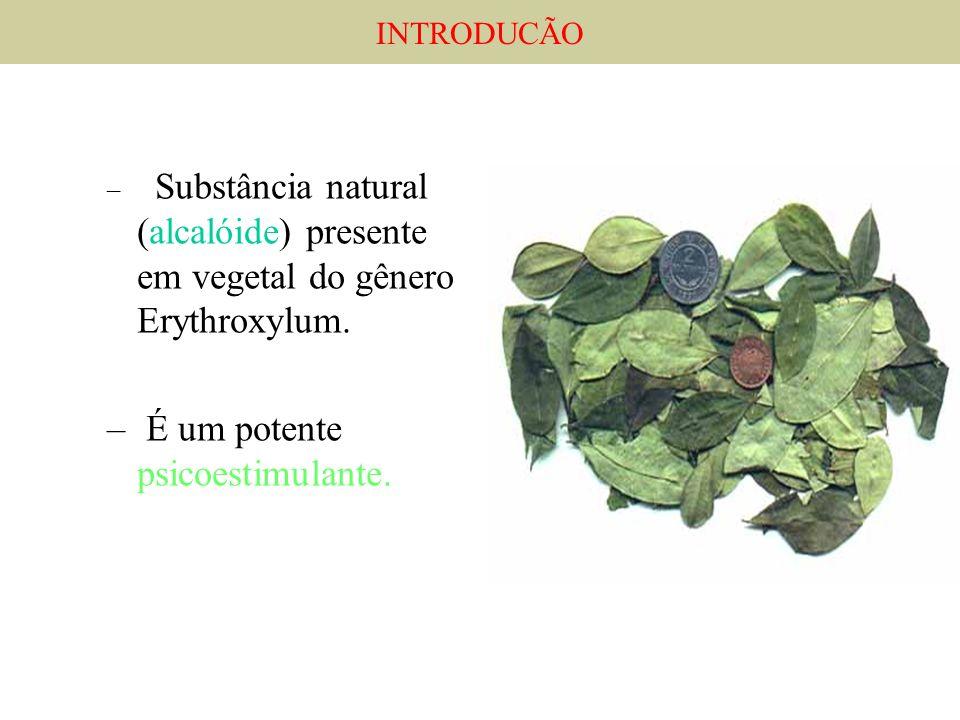 – Substância natural (alcalóide) presente em vegetal do gênero Erythroxylum. – É um potente psicoestimulante. INTRODUCÃO