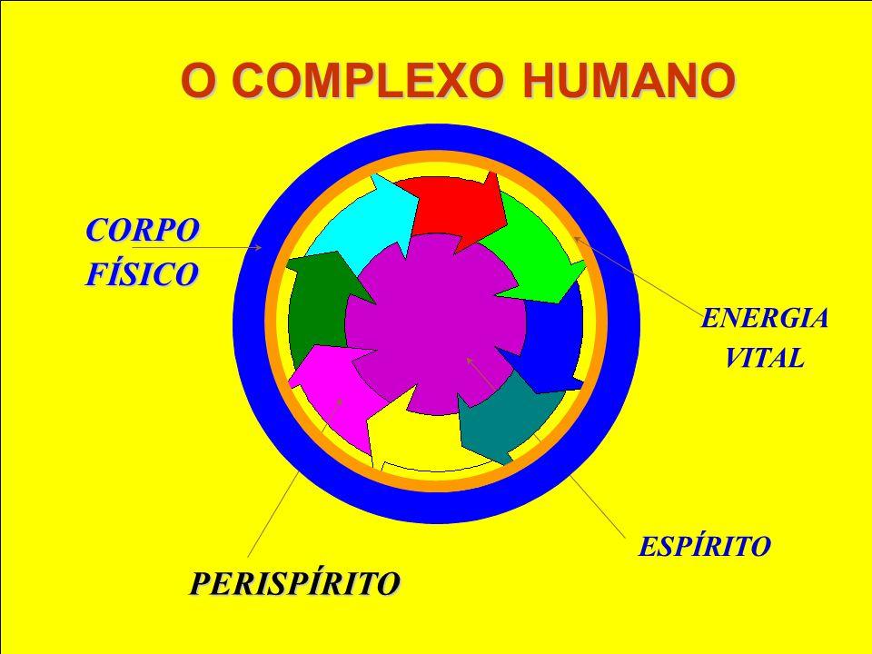 O perispírito, além de conter o mapeamento do corpo físico e a organização energética do corpo espiritual, tem também a função e capacidade do registro energético do processo evolutivo.