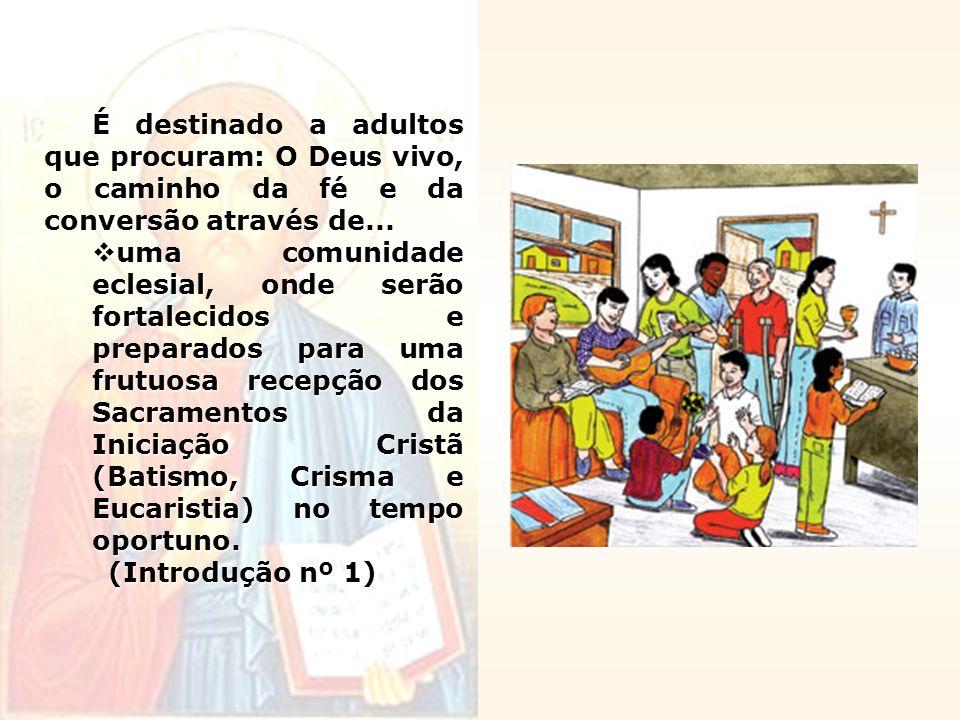 É destinado a adultos que procuram: O Deus vivo, o caminho da fé e da conversão através de... uma comunidade eclesial, onde serão fortalecidos e prepa