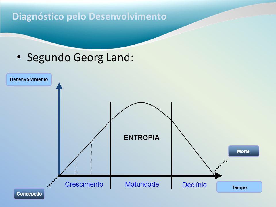 Diagnóstico pelo Desenvolvimento Segundo Georg Land: Concepção Desenvolvimento Tempo ENTROPIA Crescimento Declínio Maturidade Morte