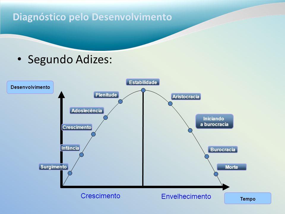 Diagnóstico pelo Desenvolvimento Segundo Adizes: Desenvolvimento Tempo Crescimento Envelhecimento Surgimento Infância Crescimento Adoslecência Plenitu