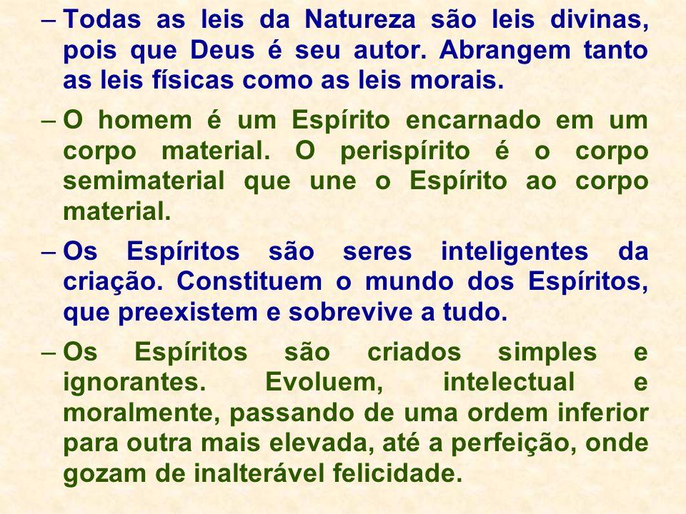 –Todas as leis da Natureza são leis divinas, pois que Deus é seu autor. Abrangem tanto as leis físicas como as leis morais. –O homem é um Espírito enc