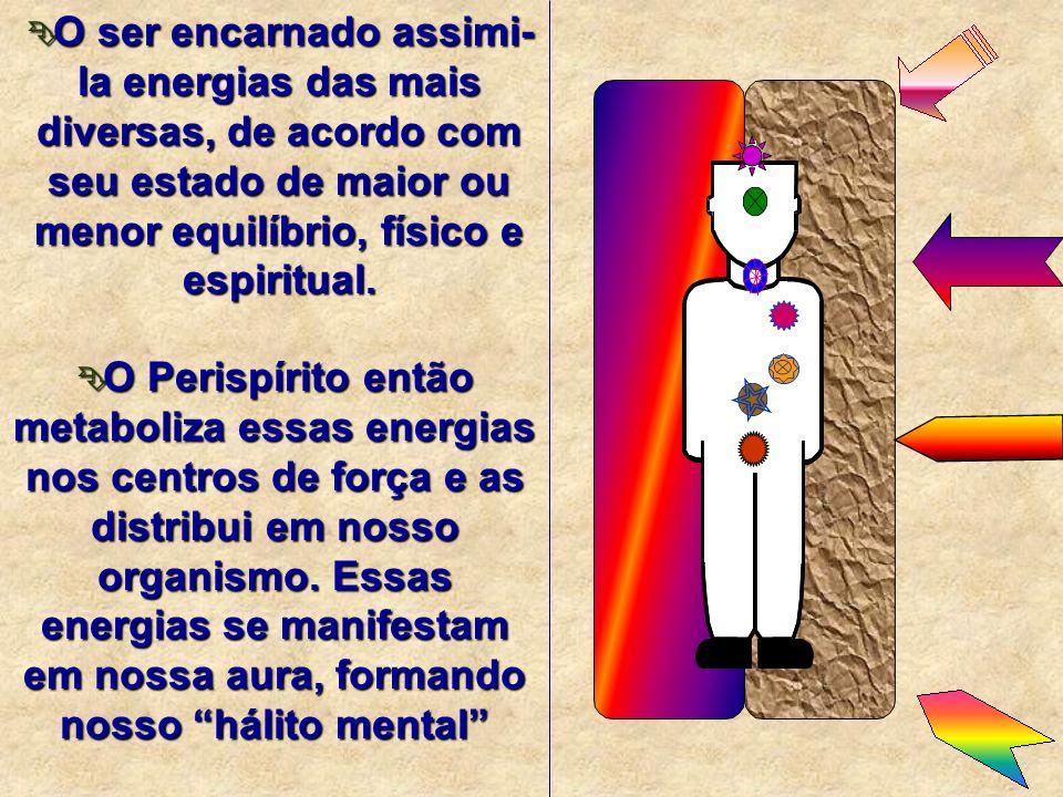 O perispírito, além de conter o mapeamento do corpo físico e a organização energética do corpo espiritual, tem também a função e capacidade do registr