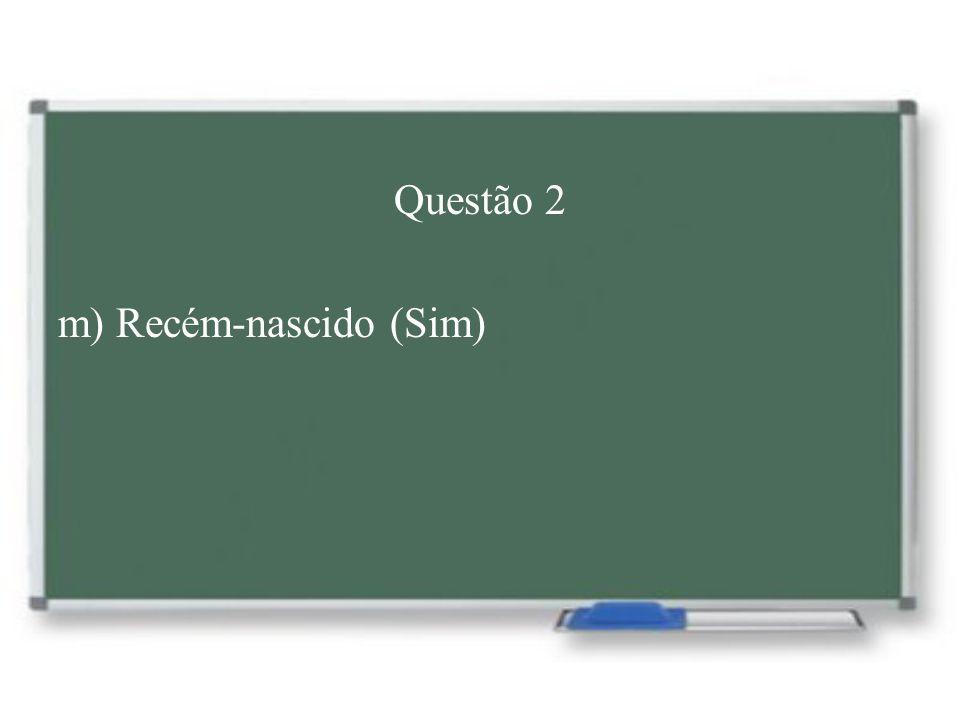 Questão 2 m) Recém-nascido (Sim)