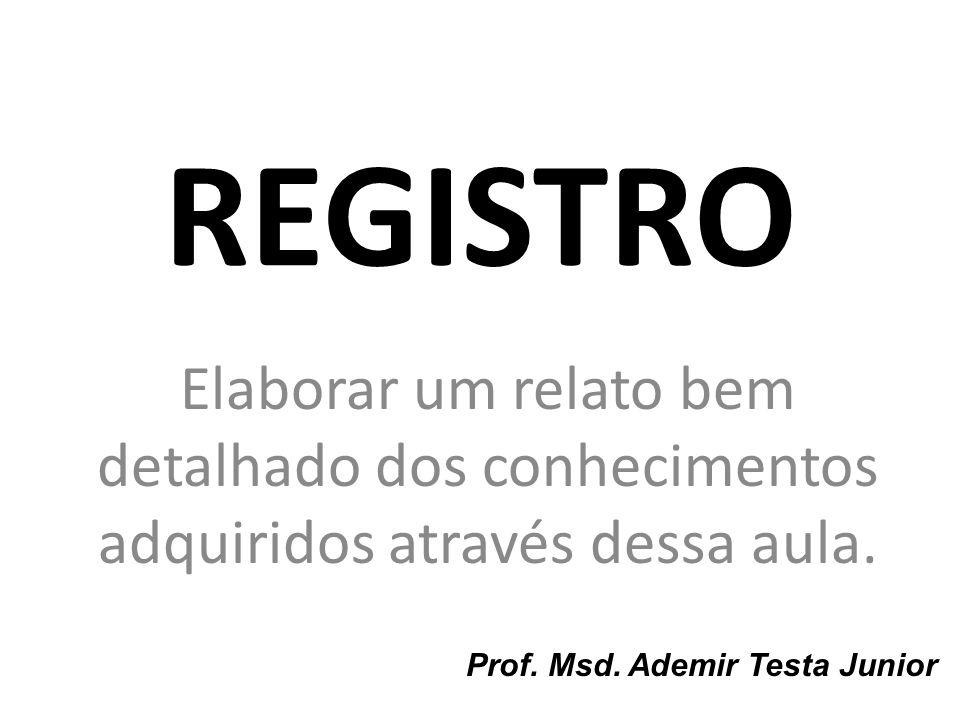 REGISTRO Elaborar um relato bem detalhado dos conhecimentos adquiridos através dessa aula. Prof. Msd. Ademir Testa Junior