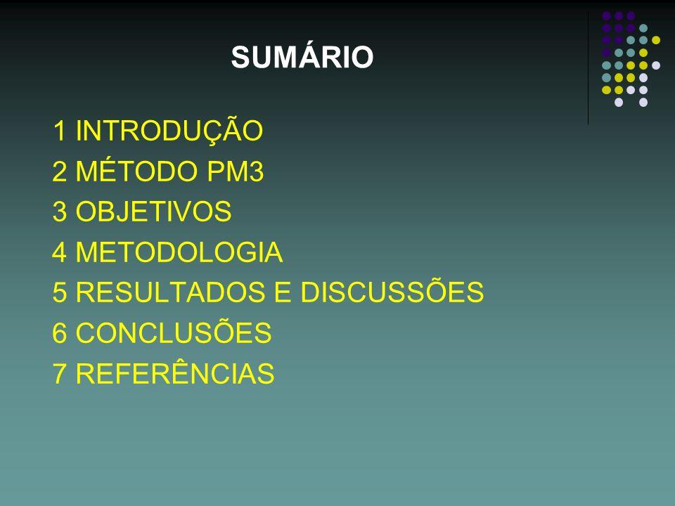 SUMÁRIO 1 INTRODUÇÃO 2 MÉTODO PM3 3 OBJETIVOS 4 METODOLOGIA 5 RESULTADOS E DISCUSSÕES 6 CONCLUSÕES 7 REFERÊNCIAS