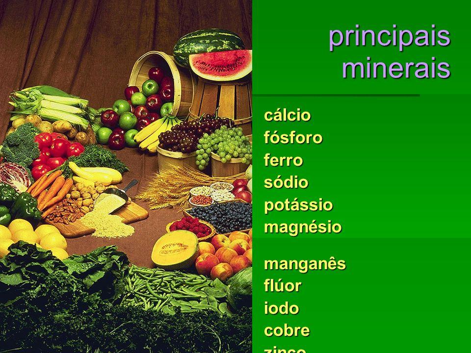 principais minerais cálcio cálciofósforoferrosódiopotássio magnésio manganês flúoriodocobrezinco