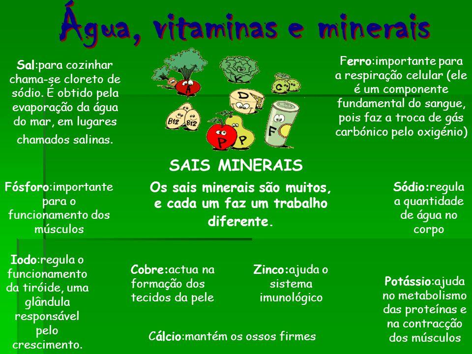 SAIS MINERAIS Os sais minerais são muitos, e cada um faz um trabalho diferente. Cálcio:mantém os ossos firmes Ferro:importante para a respiração celul