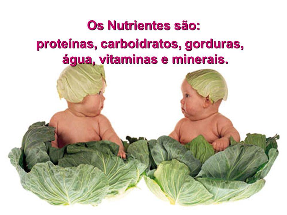 Os alimentos reguladores ajudam o corpo a funcionar como um relógio e são ricos em vitaminas e sais minerais, que encontramos nas verduras, frutas e legumes.