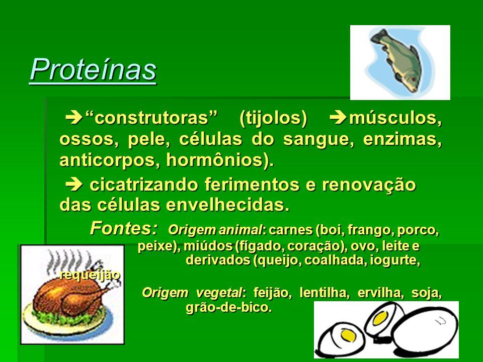 Verduras e legumes são especialmente ricos em água e sais minerais.