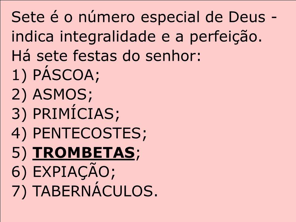 Sete é o número especial de Deus - indica integralidade e a perfeição. Há sete festas do senhor: 1) PÁSCOA; 2) ASMOS; 3) PRIMÍCIAS; 4) PENTECOSTES; 5)