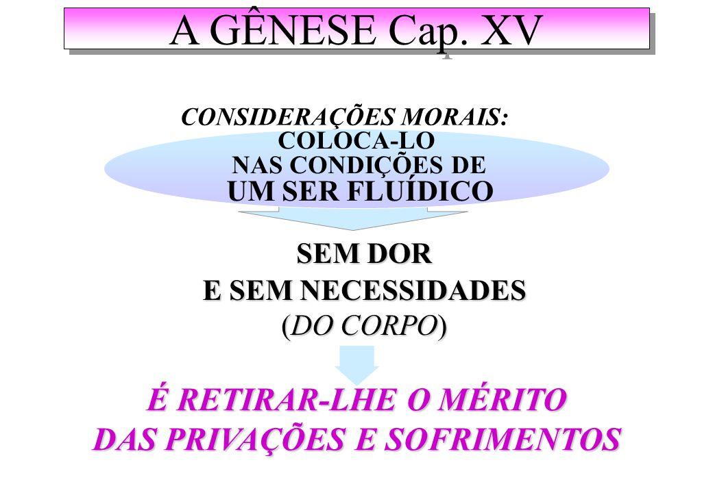 A GÊNESE Cap.