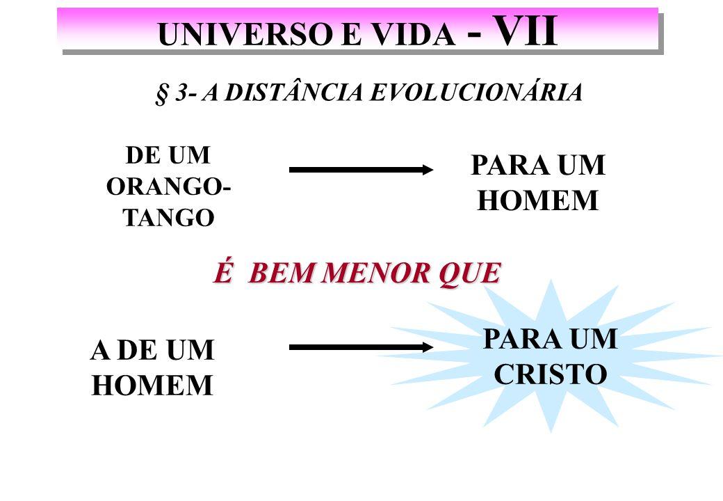 PARA UM CRISTO UNIVERSO E VIDA - VII É BEM MENOR QUE DE UM ORANGO- TANGO PARA UM HOMEM § 3- A DISTÂNCIA EVOLUCIONÁRIA A DE UM HOMEM