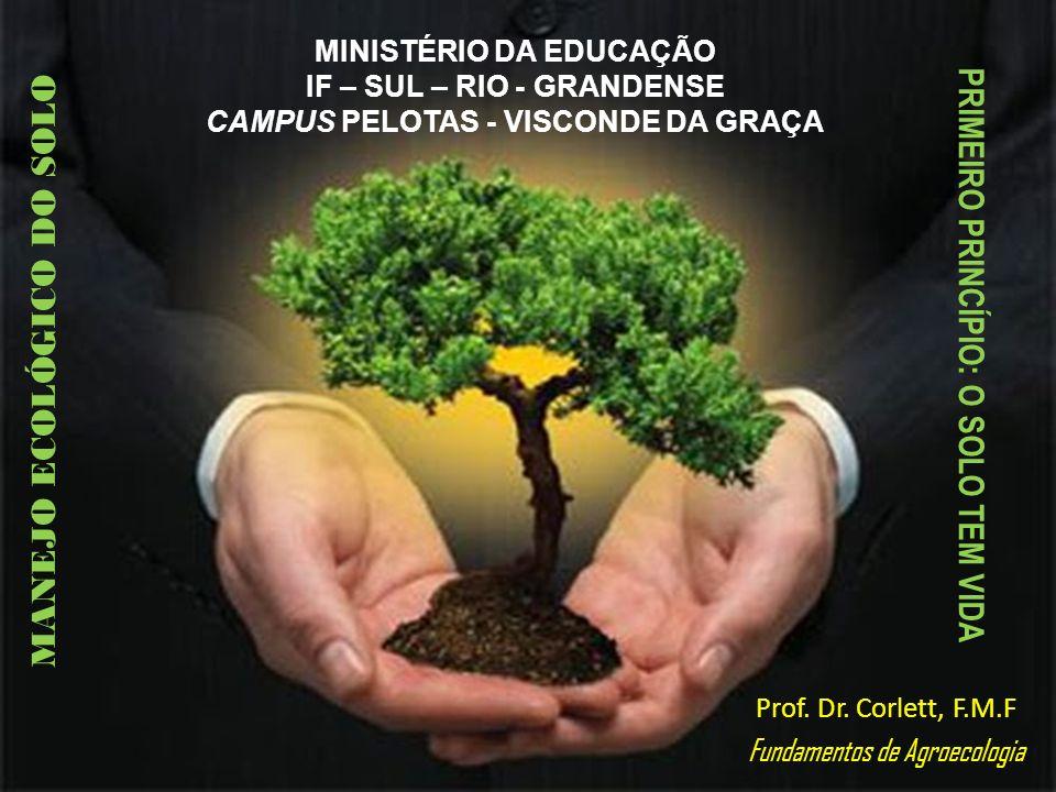 MINISTÉRIO DA EDUCAÇÃO IF – SUL – RIO - GRANDENSE CAMPUS PELOTAS - VISCONDE DA GRAÇA Prof. Dr. Corlett, F.M.F Fundamentos de Agroecologia PRIMEIRO PRI